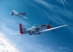 Pair of Mustangs facing diving Fw190