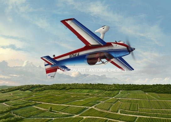 CR-100 from Dijon-Voltige flying over French Vineyards
