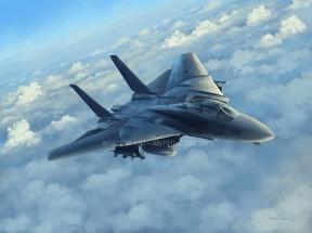 F-14 Tomcat, High boost